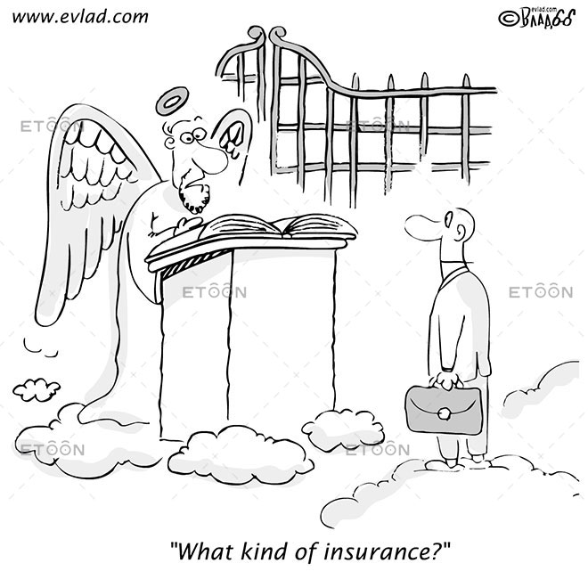 What kind of insurance?: eToon cartoon for newsletters, presentations, websites, books and more